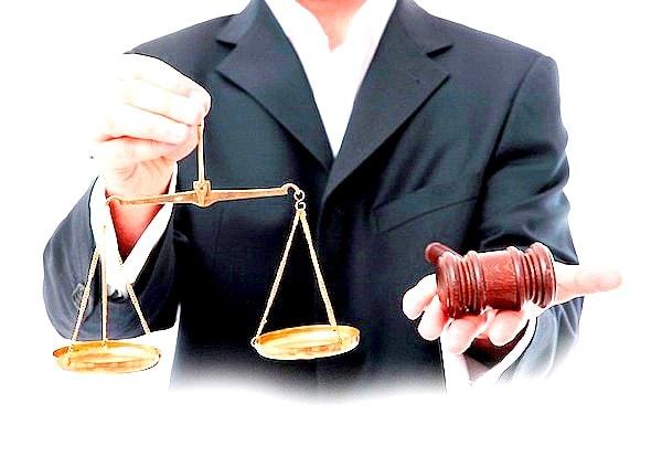 avocat en ligne france